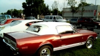 Ford Mustang Cobra Gt 500 Shelby
