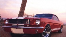 Ford Mustang Gt350 1966 Muscle Car